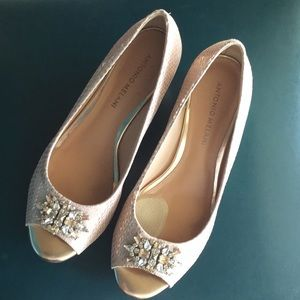 Dress Wedge shoe